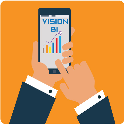 Vision Business Intelligence